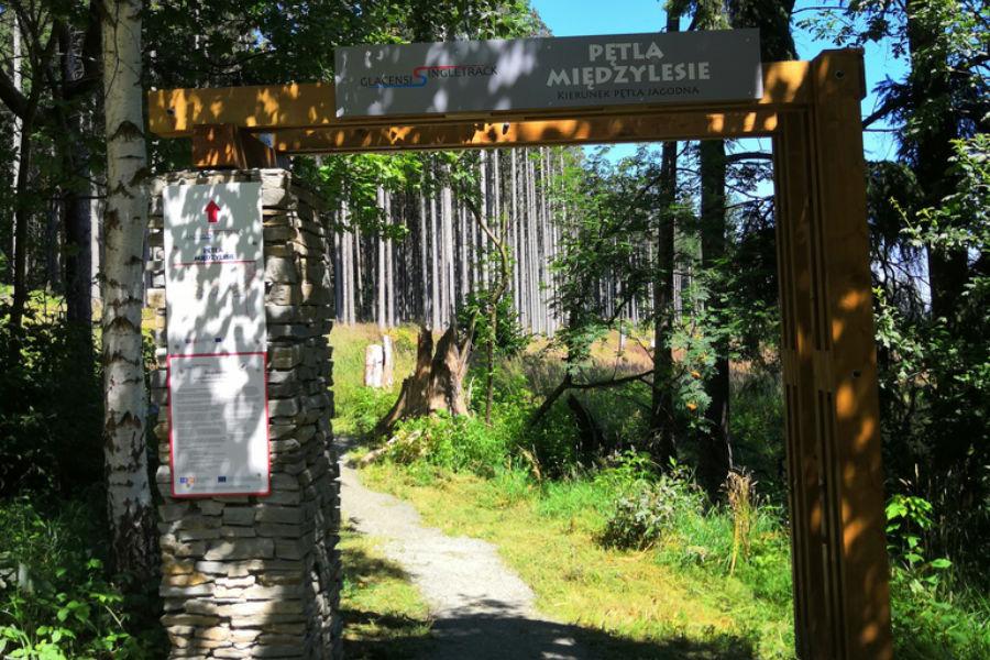 singletrack mezilesí 31 km od chaty Luna